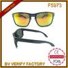 F5973 ontmoet de Zonnebril van de Spiegel van de Kwaliteit de Stijl van Ce Mens