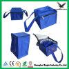 Vente en gros pliable de sac de refroidisseur isolée par coutume