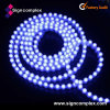 5050 Slim PU Glue Potted Neon impermeável IP65 Strip LED carro luz