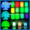 Bestes Preis-Glühen im dunklen Puder für Farbanstrich