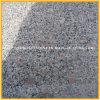 Het goedkoopste Populaire Opgepoetste Grijze G383 Graniet van de Bloem van de Parel voor het Bedekken
