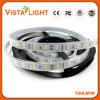 커피/와인 바를 위한 DC12V 18W/M 색깔 LED 지구 빛