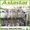 Chaîne de production carbonatée de machine de remplissage de boisson non alcoolique de bouteille en plastique