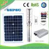 pompa sommergibile DC/AC del motore solare di 210-250-300-350-600fett con MPPT