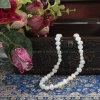 淡水の真珠