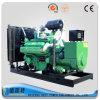 jogo de gerador do gás da natureza 300kw com GNL LPG CNG