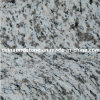 Chinesisches Granite Tiger Skin White für Building external Wall