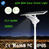80W 15m Zone de capteur IP65 Bridgelux Solar Road Lamp