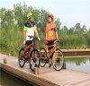 Bicicleta eléctrica de 2 ruedas, bicicleta derecha eléctrica de 2 ruedas
