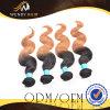 Ombre 색깔 고품질 사람의 모발 Malaysian 바디 파