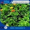 Plant (8-10g)를 위한 플라스틱 Mesh