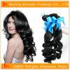 Braziliaanse Haar van het Haar van de Pruik van het Menselijke Haar van de hoogste Kwaliteit het Krullende