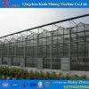 Выбранная профессиональная дешевая стеклянная изолированная миниая Tempered для Angriculture