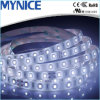 Luz de tira flexible de DC12V DC24V 60LEDs 2835 LED