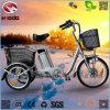 250W 3車輪の年配者のための電気バイクの貨物三輪車