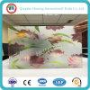 4-8mm neues Muster-dekoratives Glas mit Cer ISO