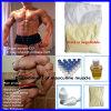 Exemesta Aromasin für der Frauen-107868-30-4 Puder Gewicht-Gewinn-sperrig seiendes Schleife-der Steroid-Exemesta/Aromasin