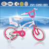 20 Inch Beautiful Cheap Kid Bike From King Cycle Factory