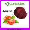 Lycopène hydrosoluble 5% 10% du lycopène 6%-90% d'extrait de tomate