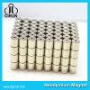 Kundenspezifischer permanenter Neodym-Zylinder-Bewegungsmagnet