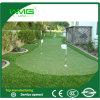 Preço da grama de tapete para o campo de golfe
