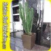 顧客用ステンレス鋼の正方形の植木鉢プランター