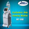 Cuerpo de Cryolipolysis del helada de la grasa caliente que adelgaza la máquina
