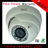 1/3의 소니 Effio-E CCD 700tvl CCTV Camera (IC-LDMW30-A)