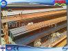 Staaf de van uitstekende kwaliteit van de Hoek van het Ijzer/van het Staal voor Bouw (flm-rm-022)
