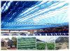 Réseau neuf d'ombre de Sun de HDPE d'agriculture utilisé pour la Chambre verte