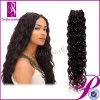 2013マレーシアのカーリーヘアーの織り方の加工されていない卸し売りバージンのマレーシア人の毛