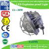 Passway를 위한 광업 12-30W 공장 가격 LED 폭발 방지 빛