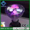 PAR30 projector do diodo emissor de luz do diodo emissor de luz Grow Light 5W