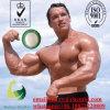 주사 가능한 펩티드 Mgf 근육 빌딩 GMP 표준 CAS 96827-07-5