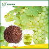 Petróleo de germen de la uva