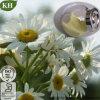 100% natürliches Kamillen-Auszug-20:1; Apigenin 0.3%-98%