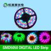 A melhor tira 60LEDs/M do diodo emissor de luz de Digitas do preço 5050 para a iluminação da decoração