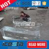 10ton направляют охлаждая машину блока льда для охлаждать рыб