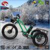 中断が付いているアルミ合金のバイクの脂肪質のタイヤの電気三輪車