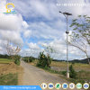 3-5 anos de luzes de rua solares do diodo emissor de luz da ESPIGA da garantia 30W-60W