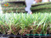 [سنه] حديقة محترفة خارجيّ اصطناعيّة يرتّب عشب