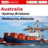 Transporte do oceano (frete de mar FCL&LCL) a Austrália - transporte