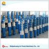 Pompe manuelle submersible de siphon d'alésage de turbine verticale profonde de trou