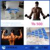 Recovery 77591-33-4를 위한 99% 펩티드 Tb500 Tb 500