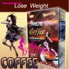 Perdere il caffè verde Svelte del peso (ROMANO200)