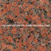 Гранит сляба клена красный Polished для настила и Countertop