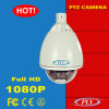 H. 264 Onvif 2mega Pixels Outdoor P2p IP PTZ Webcam