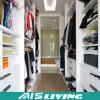 옷장 옷장 (AIS-W141)에 있는 주문품 도보를 제외하고 단단한 나무 공간