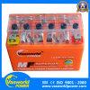 Type libre batterie électrique de Maintencance de moto de 12V 6ah