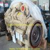 Moteur diesel de Cummins Ktta38-G pour le groupe électrogène et le Genset